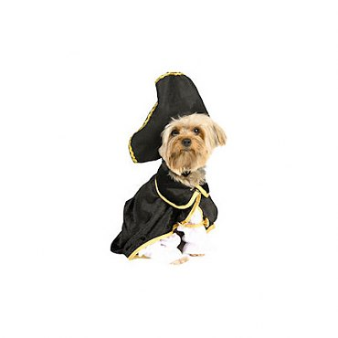 Captain Canine Costume