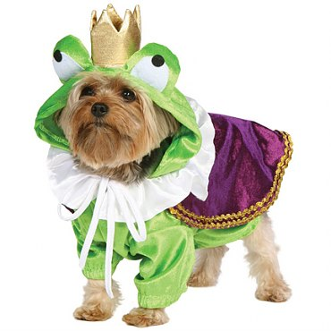 Froggy Doggy Costume