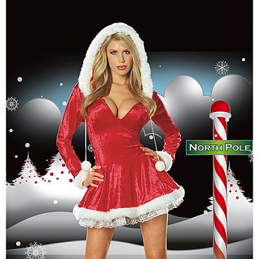 Sleigh Belle Costume
