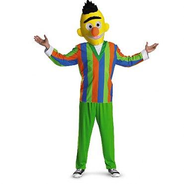 Sesame Street Bert Adult Costume
