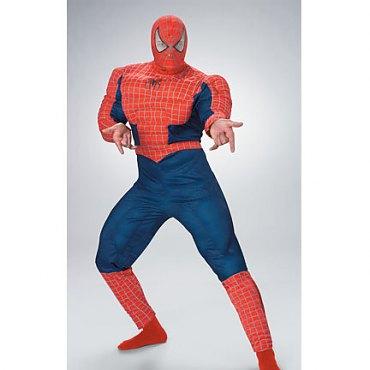 Deluxe Spiderman Costume