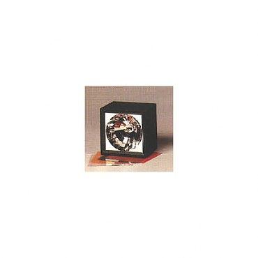 Xenon Strobe Light