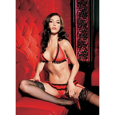 Red Mesh Bikini Top and Garter Belt