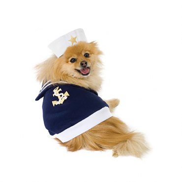 Sailor Pup Pet Costume