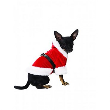 Red Santa Paws Pet Costume