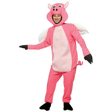 Flying Pig Costume
