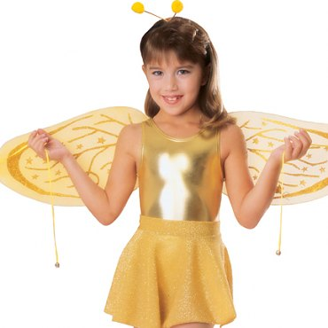 Childs Bee Costume Kit