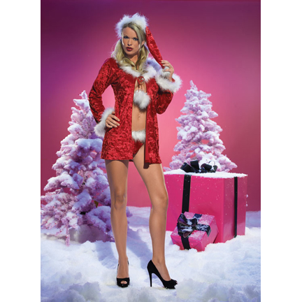 Sexy Christmas Costume - Mrs. Claus.